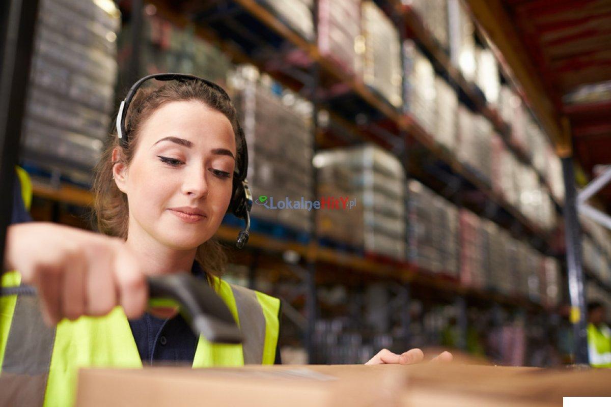 Praca w sektorze logistycznym